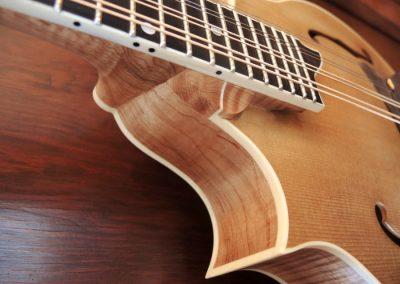 mandolin-2point-233-73-900