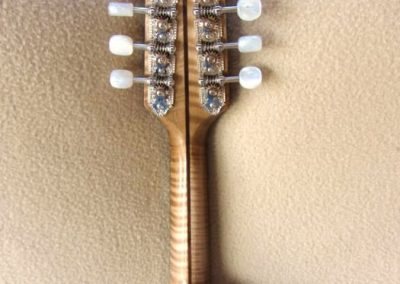 mandolin-a2-168-301