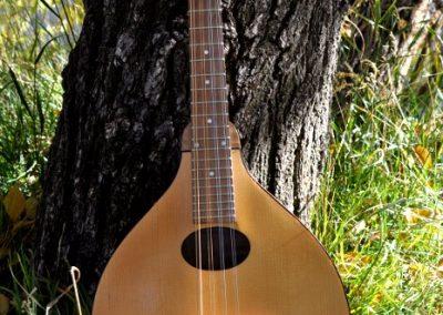mandolin-a2-190-437