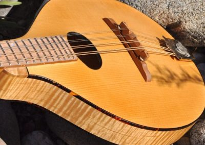 mandolin-a2-190-456