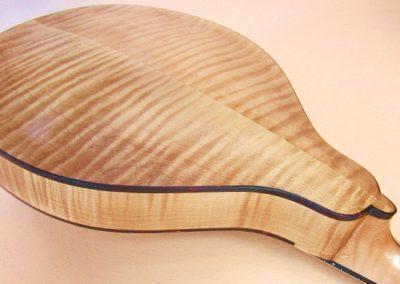 mandolin-a2-194-388