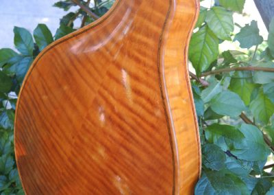 mandolin-a2-213-478