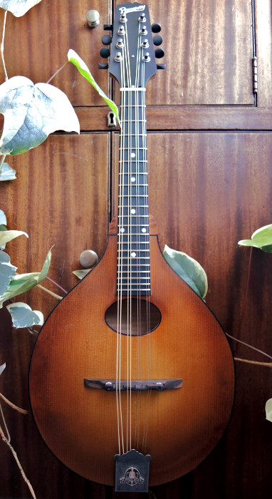 mandolin-a2-218-72