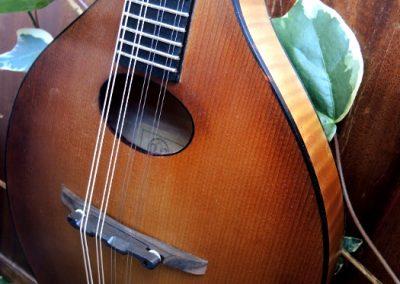 mandolin-a2-218-75
