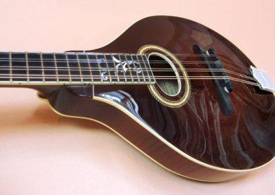mandolin-a4-192-66