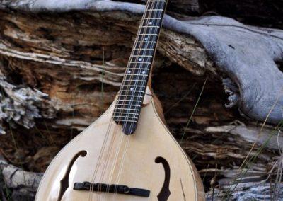 mandolin-a5-146-035