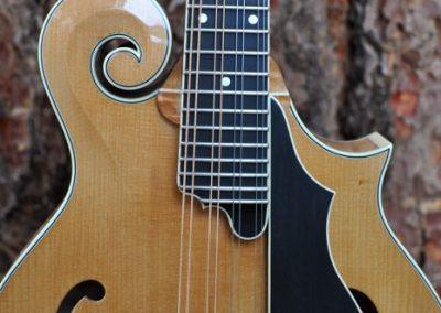 mandolin-f5-160-025