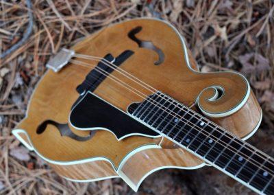 mandolin-f5-160-026