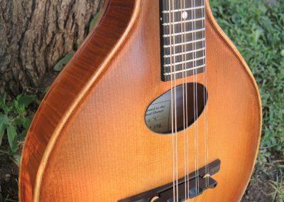 mandolin-a2-236-19