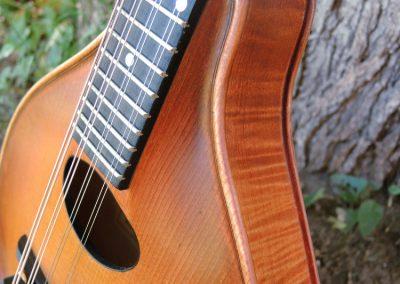 mandolin-a2-236-24