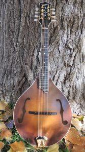Pomeroy Mandolin A-5 #238