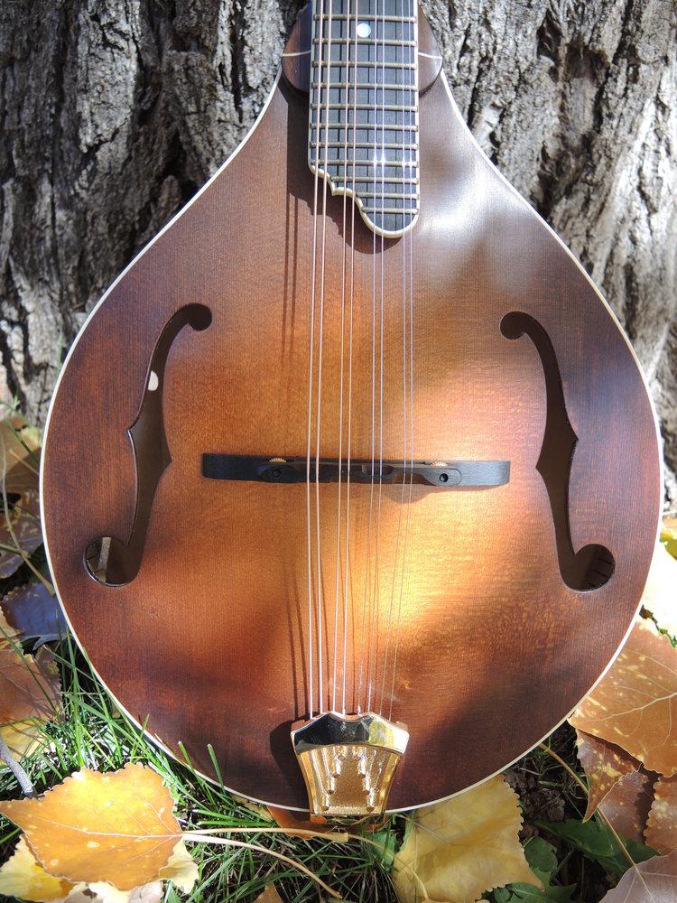 mandolin-a5-238-143