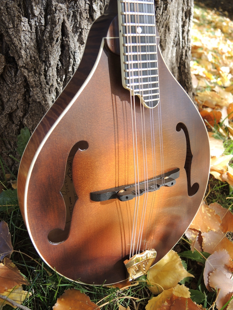 mandolin-a5-238-148
