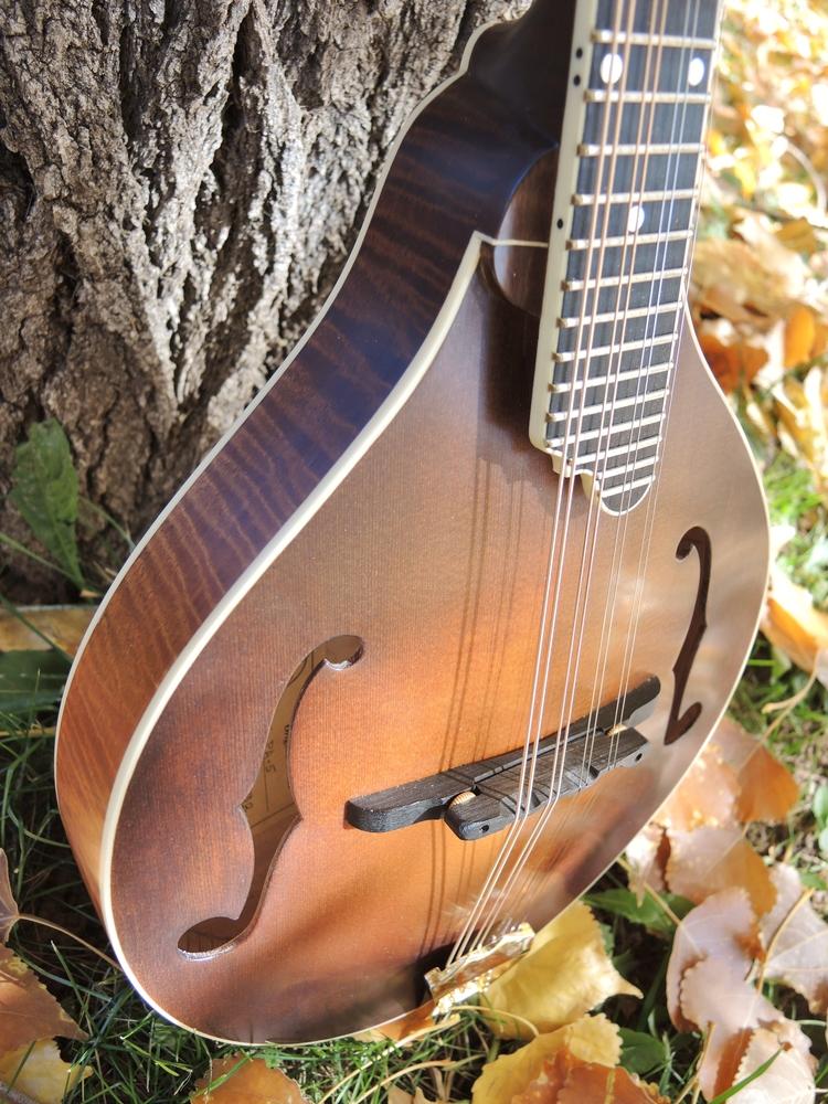 mandolin-a5-238-149