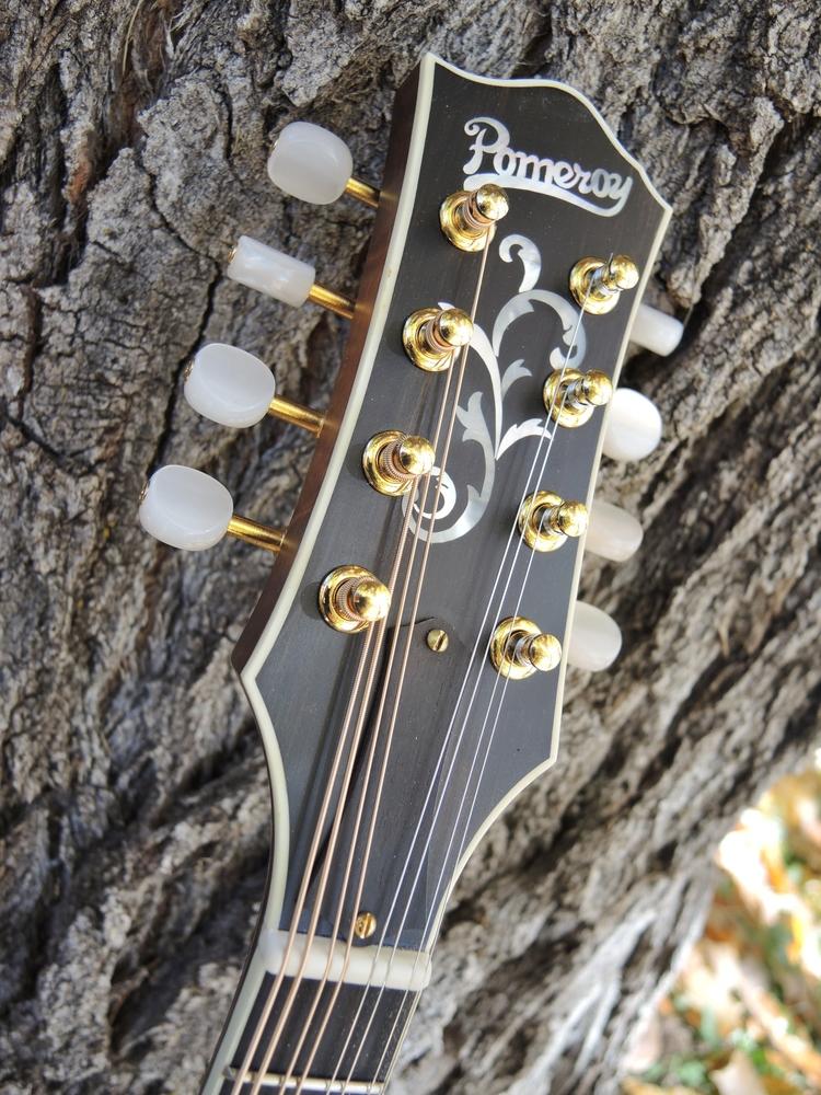 mandolin-a5-238-150