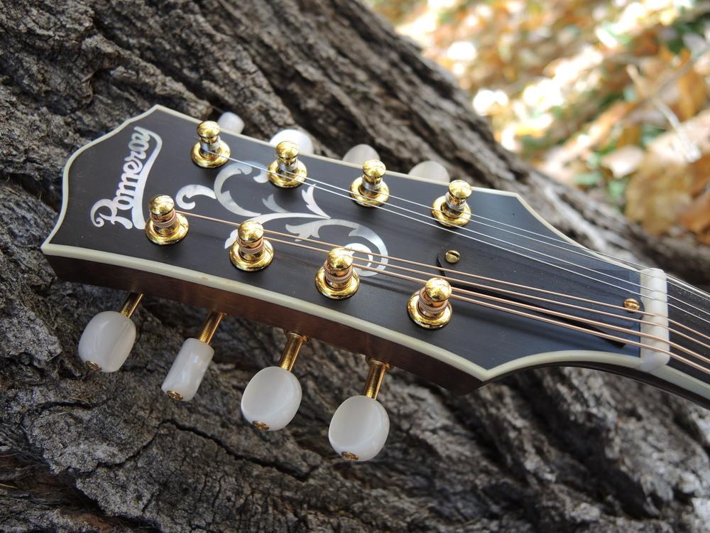 mandolin-a5-238-151