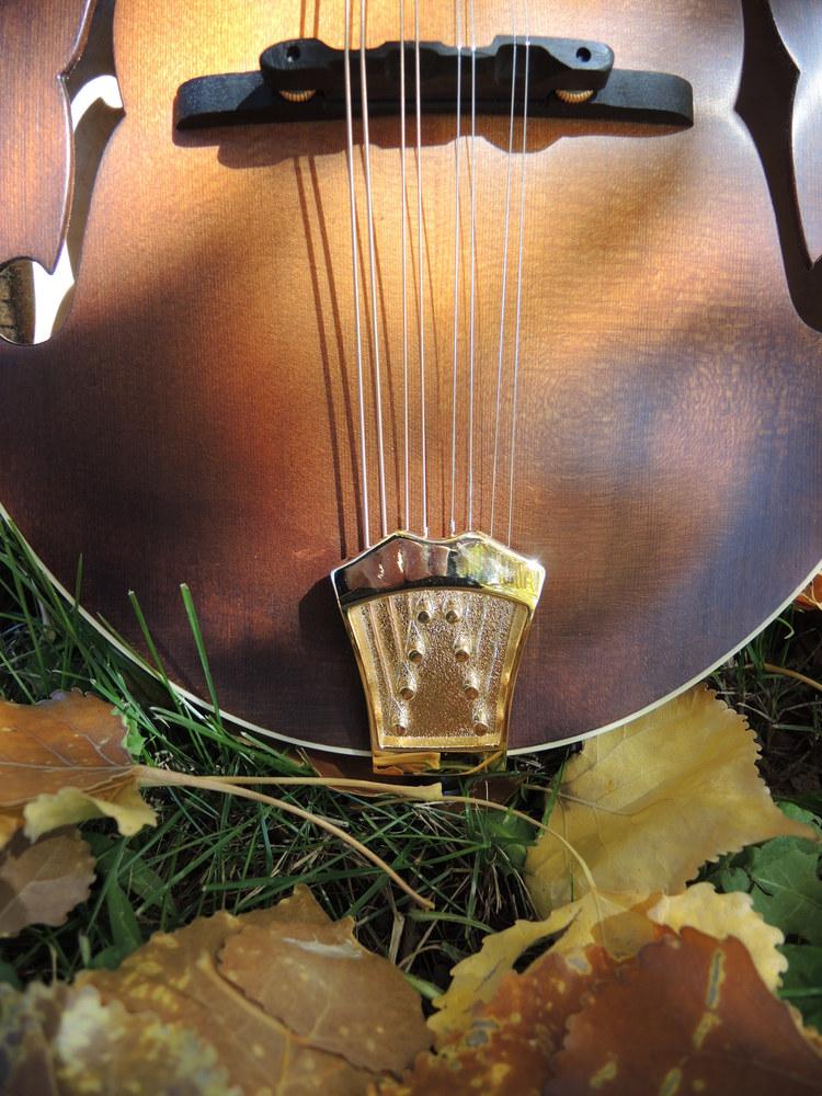 mandolin-a5-238-152