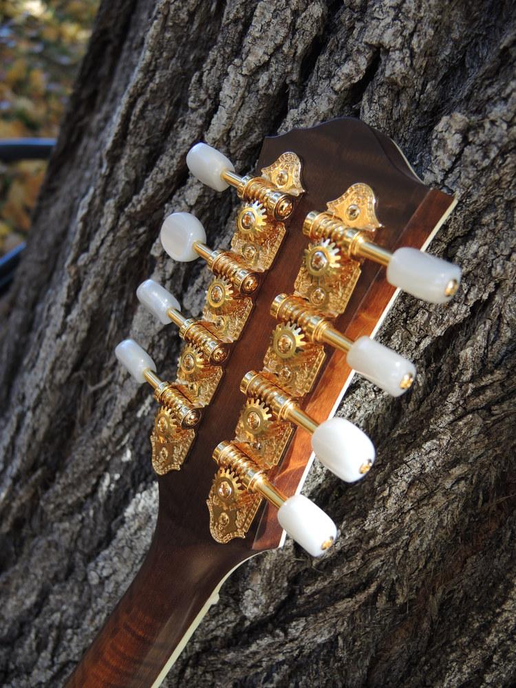 mandolin-a5-238-154