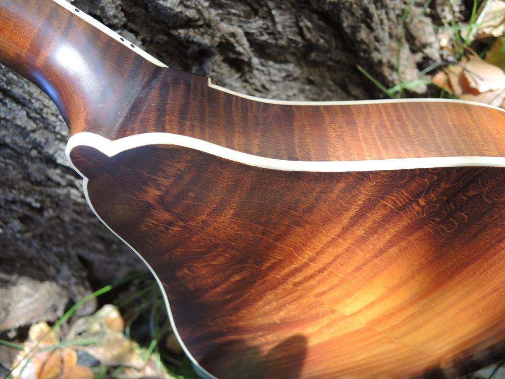 mandolin-a5-238-158