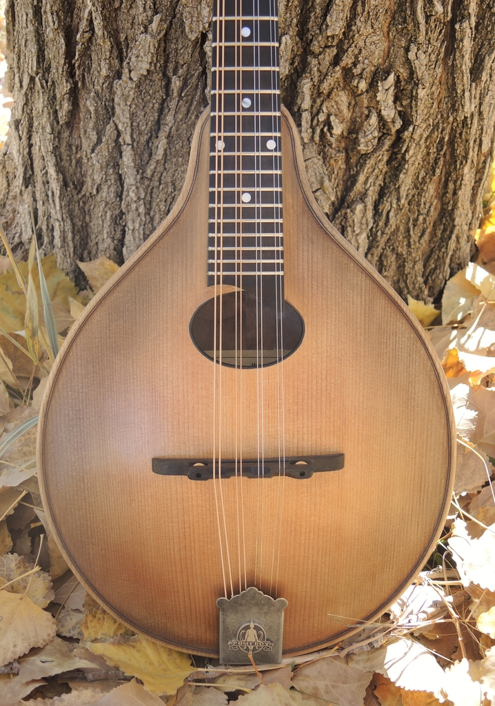mandolin-a2-239-173