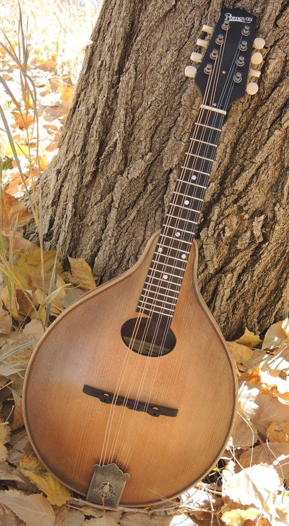 mandolin-a2-239-174