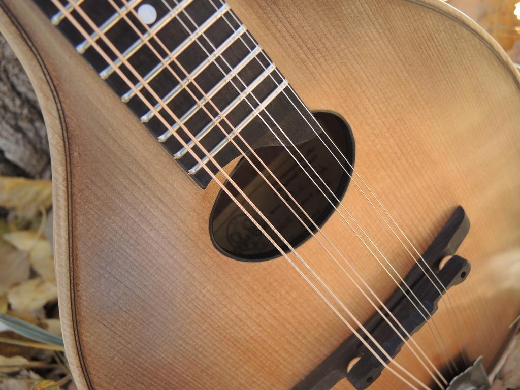 mandolin-a2-239-177