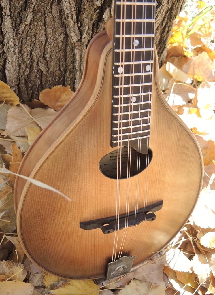 mandolin-a2-239-178