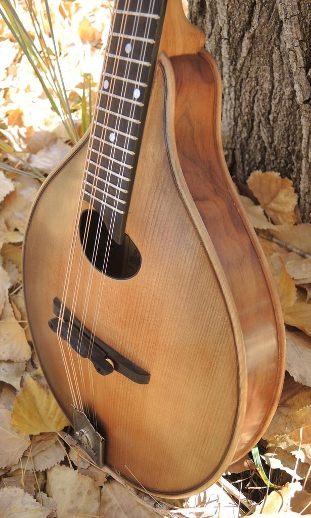 mandolin-a2-239-179
