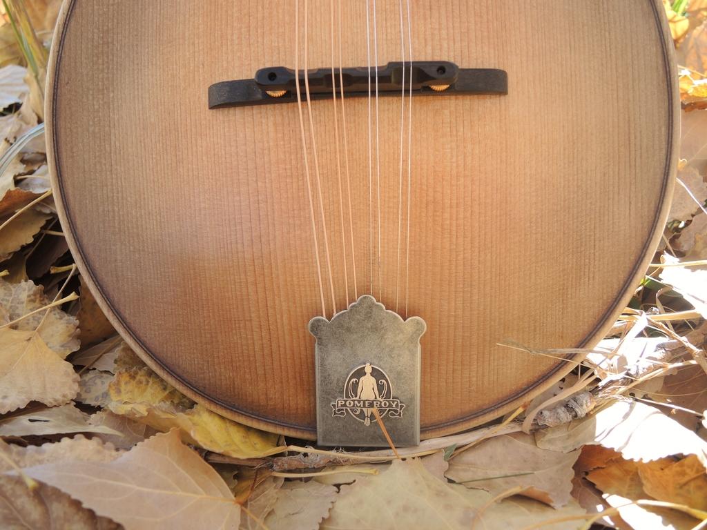 mandolin-a2-239-181