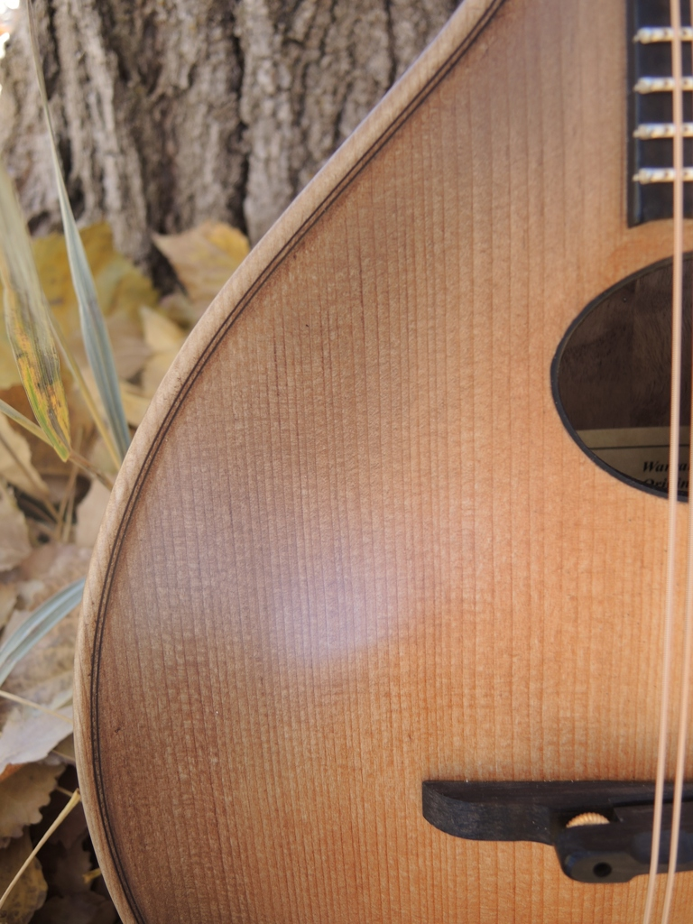 mandolin-a2-239-182