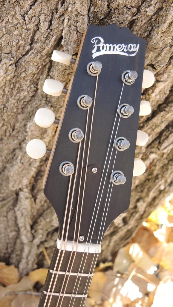 mandolin-a2-239-183