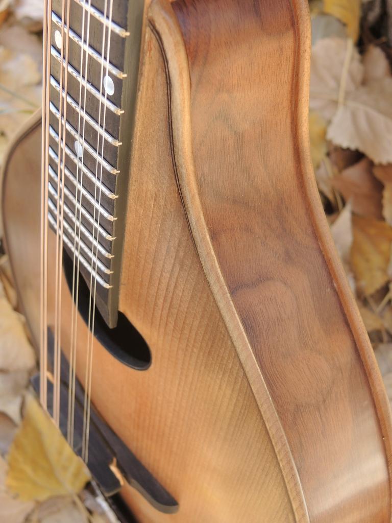mandolin-a2-239-184
