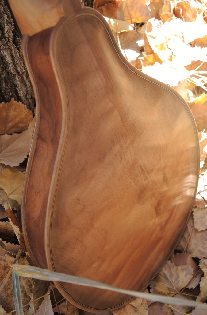 mandolin-a2-239-192