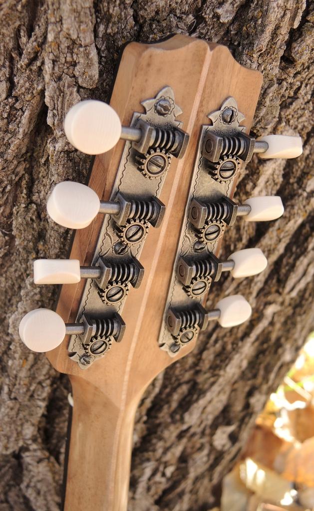 mandolin-a2-239-194