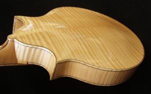 mandolin-2point-0384