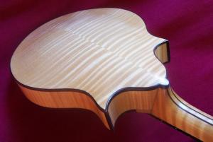 mandolin-2point-6984