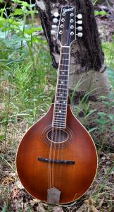 mandolin-a2-163-001