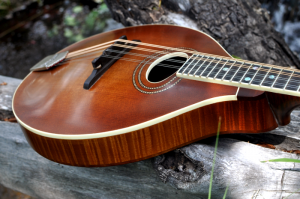 mandolin-a2-163-020