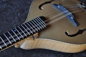 mandolin-a5-0088
