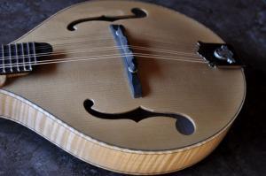 mandolin-a5-0091