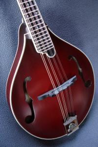 mandolin-a5-05621
