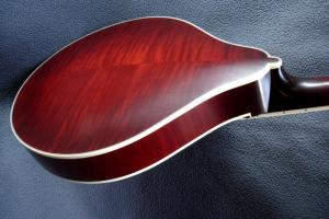 mandolin-a5-05635