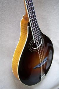 octavemandolin-9091