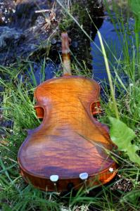 fiddle-002-065