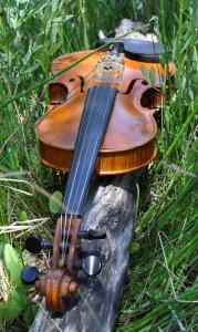 fiddle-002-103
