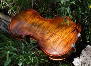 fiddle-002-104