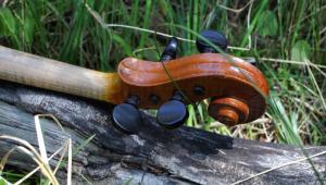 fiddle-002-109
