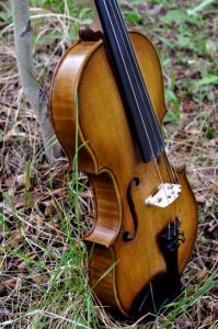 fiddle-006-0026