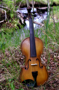 fiddle-006-0028