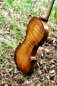 fiddle-006-0033
